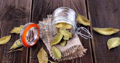 Кухонные лайфхаки: как правильно хранить лавровый лист