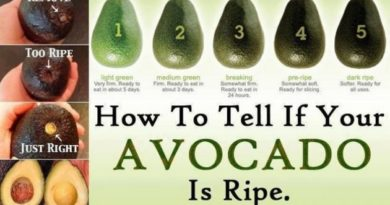 Как нужно правильно выбирать авокадо