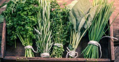 """Как правильно хранить """"капризные"""" продукты в холодильнике"""