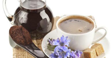 Цикорий: польза и вред, полезные свойства, рецепты, кофе из цикория